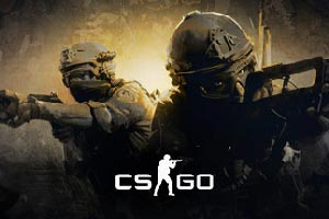 Finding the right notebook for CS:GO